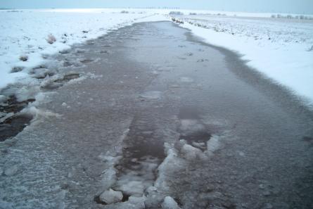 Große Pfützen mit Eis