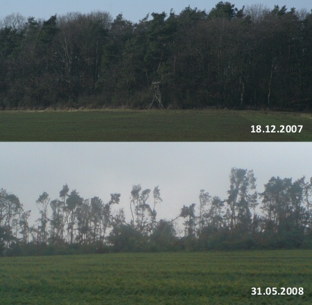 Sturmschäden in Wölfersheim (vorher, nachher)